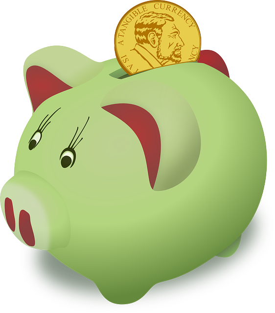 Půjčka do GE Money Bank